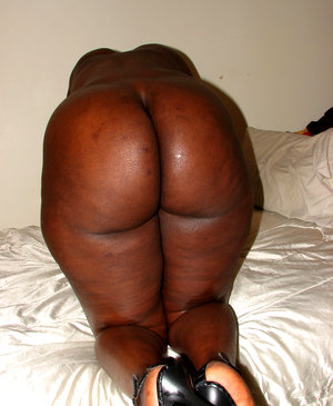 Fat black asses collection